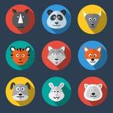 Zwierzęca ikona Zdjęcie Stock