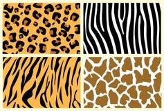 zwierzęce skóry Zdjęcia Stock