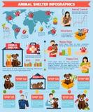Zwierzęcego schronienia infographics Obrazy Royalty Free