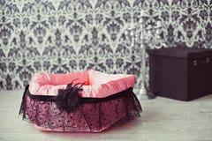 Zwierzę domowe materac w pokoju Zdjęcie Royalty Free