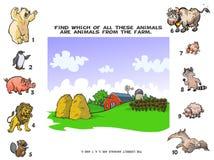 Zwierzęta Gospodarskie quiz Zdjęcia Royalty Free