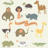 Zwierzęta w Afryka Obraz Royalty Free