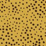 zwierzęcy futerkowy bezszwowy Fotografia Stock