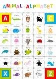 Zwierzęcy zoo abecadła plakat Śliczny postać z kreskówki - set odosobniony Białego tła Płaski projekt Dzieci dzieci edukacja alig Obrazy Stock