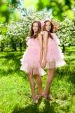 Zwillinge in der rosafarbenen Puppeart Stockfotografie