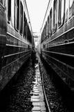 Zwillings-Züge stockbild
