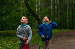Zwillingsbrüder im Wald Stockfotografie