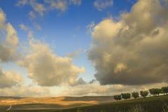 Zwischen Apulien und Basilikata: hügelige Landschaft mit Olivenhainen herrschte durch Wolken auf gepflogenem Boden vor Italien Stockbild