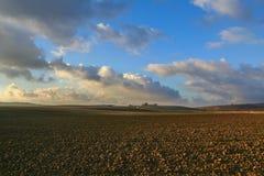Zwischen Apulien und Basilikata: hügelige landwirtschaftliche Landschaft vor Sonnenuntergang Bewirtschaften Sie auf dem gepflogen Lizenzfreie Stockbilder