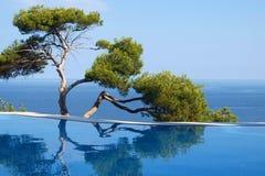 Zwischen dem Pool und dem Meer Lizenzfreie Stockfotos