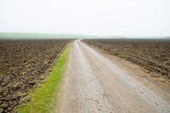 Zwischen Feldern Lizenzfreie Stockfotos