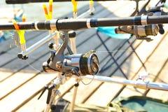 Zwitki prącie który wspina się na jetty dla łowić., Obraz Royalty Free