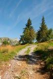 Zwitserland in de bergen Stock Foto's
