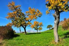 Zwitserland in de herfst Royalty-vrije Stock Fotografie