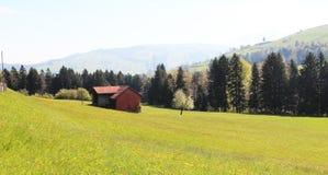 Zwitserland in de zomer Stock Fotografie