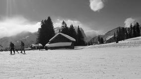 Zwitsers Stock Foto