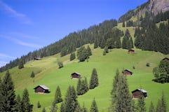 Zwitsers berglandschap Stock Afbeeldingen