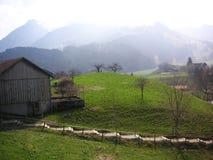 Zwitsers landbouwbedrijf Royalty-vrije Stock Afbeelding