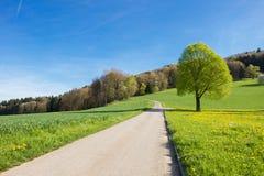 Zwitsers landschap Royalty-vrije Stock Fotografie