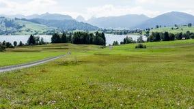 Zwitsers landschap en meer Sihl Royalty-vrije Stock Afbeelding