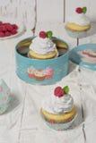 Zwitsers schuimgebakje cupcakes met frambozen en rozewater Royalty-vrije Stock Foto