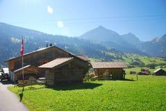 Zwitserse Alpen in de zomer Royalty-vrije Stock Afbeelding