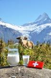 Zwitserse chocolade en kruik melk stock afbeeldingen