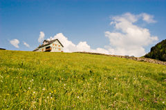 Zwitserse Prairie royalty-vrije stock fotografie