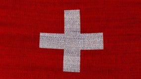 Zwitserse vlag stock videobeelden