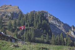 Zwitserse Vlag die in de wind golft stock afbeelding