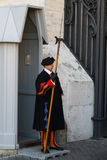 Zwitserse Wacht van de Stad van Vatikaan stock afbeeldingen