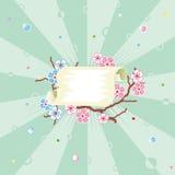 zwoje tła wiosenne kwiecisty sunbeam wzoru Obraz Royalty Free