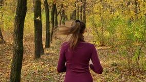 Zwolnione tempo bieg - kobieta biegacz jogging na jesieni lasowej ścieżce Dysponowanego żeńskiego sport sprawności fizycznej mode zbiory wideo