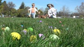Zwolnione tempo dzieciaki ma zabawy zgromadzenia jajka przy Wielkanocnym polowaniem zdjęcie wideo