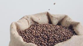 Zwolnione tempo kawowe fasole spada w burlap worek zbiory wideo