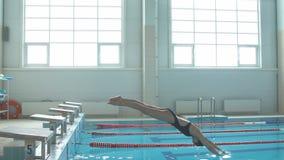 zwolnione tempo strzelający profesjonalista koncentrował żeńskiej pływaczki na zaczyna bloku zbiory wideo