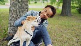 Zwolnione tempo szczęśliwego psiego właściciela atrakcyjna młoda kobieta pieści ślicznego shiba inu psa awanturuje swój futerko i zbiory