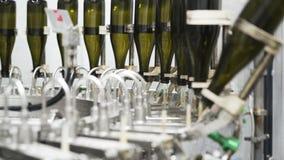 Zwolnione tempo, szklane butelki na automatycznym konwejerze wykłada przy szampana lub wina fabryką Roślina dla rozlewniczej alko zdjęcie wideo