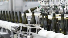 Zwolnione tempo, szklane butelki na automatycznym konwejerze wykłada przy szampana lub wina fabryką Roślina dla rozlewniczej alko zbiory wideo