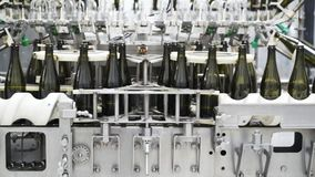 Zwolnione tempo, szklane butelki na automatycznym konwejerze wykłada przy szampana lub wina fabryką Roślina dla rozlewniczej alko zbiory