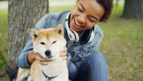 Zwolnione tempo uśmiechnięta amerykanin afrykańskiego pochodzenia dama pieści uroczego shiba inu psa sititng w parku na zielonym  zdjęcie wideo