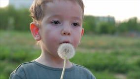 Zwolnione Tempo w górę strzału Śliczny Little Boy Beztroski dmuchanie Dandelion Outdoors na zmierzchu Poj?cie szcz??liwy zdjęcie wideo