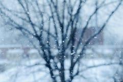 Zwolnionego tempa śnieżny spadać z drzewnym tła miasta bokeh Zdjęcia Royalty Free