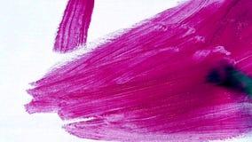 Zwolnionego tempa muśnięcie z malinową farbą na tle biała kanwa zdjęcie wideo