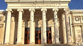 Zwolnionego Tempa wideo gołębie W locie Blisko Rumuńskiego Athenaeum zbiory