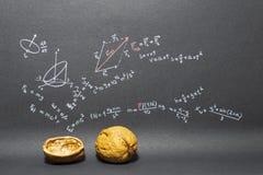 Zwrota Physics w nutshell Fotografia Royalty Free