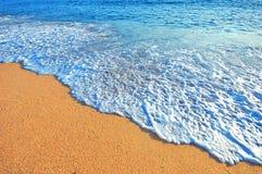 zwrotnik na plaży Zdjęcia Royalty Free