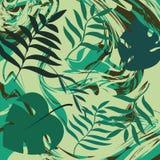 Zwrotnika backgound Tropikalni liście na zieleń marmuru teksturze pojęcia projekta restauraci szablon royalty ilustracja