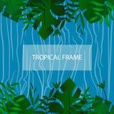 Zwrotnika sztandar pojęcia projekta restauraci szablon ramowy tropikalny Egzotów liści rama z pustą przestrzenią na błękitne wody ilustracji