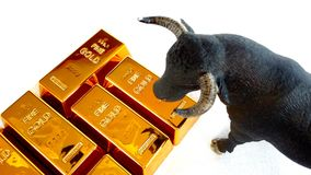 Zwyżkowy złocisty rynek Obraz Stock